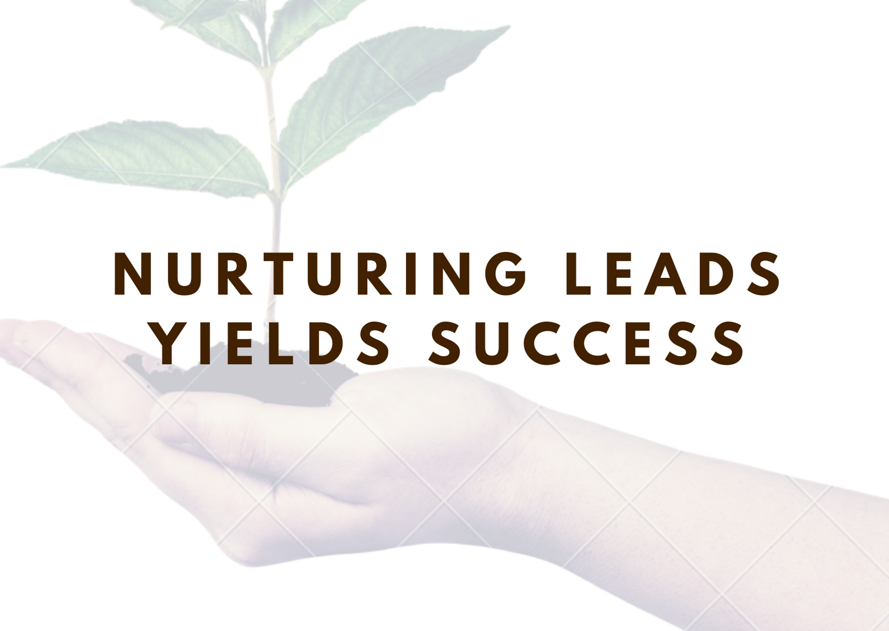 Lead nurturing coaching and strategy